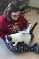 Paloma lap sitter for reading
