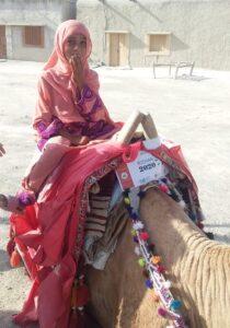 Camel Caravan (2)