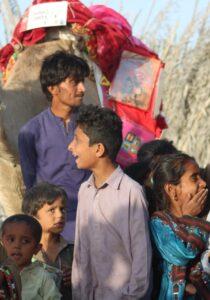 Camel Caravan (4)