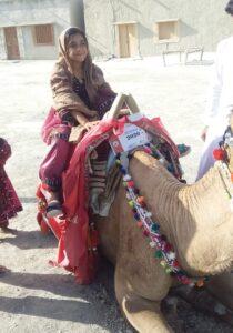 Camel Caravan (8)